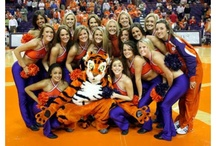 Clemson university / by Hanna Butler