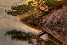 Reflections / by Jordan Henderson