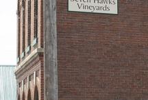 Wisconsin Wine / by WiscTimes