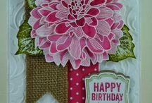 Birthday Card Inspiration / by Patty Albertson
