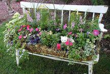 Flowers and Garden Ideas / by Tammy Bishop-DiPenti