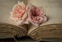 Bibliophile / by Lipstick Gypsy