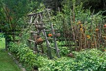 Gardening / by Janice Levi