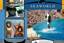 seaworld layouts / by Margaret Powell