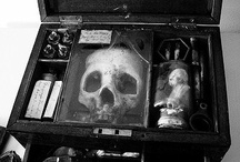 All Things Skulls and Bones / by Jennifer Bray-Weber