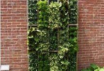 Gardens Verticle & Hanging / by Susan DeLucca