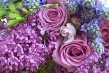 favorite flowers / by Marlene Keller