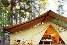 glamping / by Tracy Moore