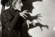 Fall & Halloween / by Susan Cochran