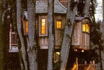 Tree Houses / by Judith Redeye