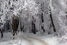 Walking In A Winter Wonderland  / by Danielle Marinesista