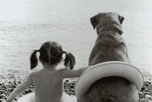 Animals :) / by Tamzin Bennett