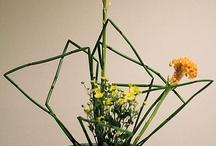 *ikebana power* / by Nancy Soshinsky