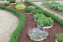 Garden Ideas / by Trism Cavalish