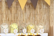 {Safari Zoo} Party / Party ideas and inspiration for a safari, zoo, madagascar theme on www.partyfrosting.com / by Party Frosting