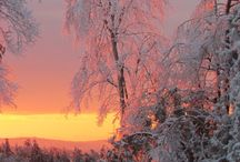 Winter in Maine  / Explore all the beauty Maine has to offer in the winter months!  / by Northern Outdoors
