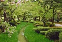 Gardens / by Rhonda Jones
