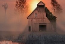 Barns / by Connie Bussey