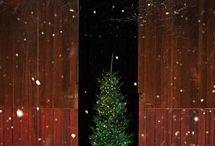 Holiday Inspiration / by Toni Holder