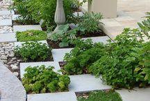Outdoor Herb Garden / by Ellis Design Group, LLC