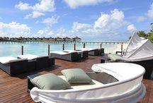 Maldives. / by Adriana RSC