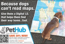 PetHub Ads, Coupons and other fun schtuff / by PetHub gets lost pets home faster.