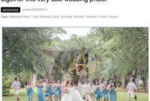 Wedding Humor / by JustMensRings.com