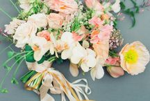 Pretty Blooms / by Jodi Miller Photography