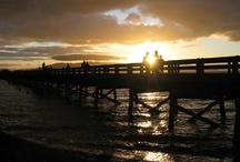 Beautiful Bellingham / by Kirkdale Press