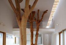 architecture/interiors/design / by Helen Quinn