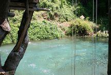 pools and backyard for la casa Didario / by Michelle Gainer Didario