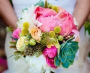 wedding / by Kate Oldham