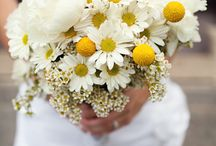 Yellow! / by Blush Floral-Design