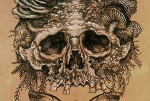 Skull / by Vanny Meneghim
