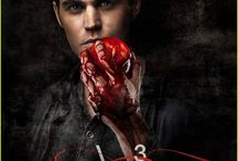vampire diaries:) / by Caitlin Beary