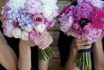 Wedding Ideas / by Bonnie Sakach