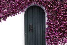 Dynamic doors / by Laura Randolph