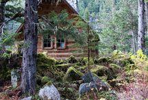 cabin. / by kali ramey martin