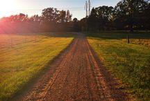 Driveway / by Christine Riley