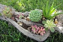 For the Garden / by Trudie Allen