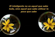 Frases  y Pensamientos / by Charo R