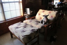 Futons in Action / Pictures of our customers using futons in their homes. / by Futon Store-
