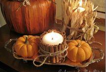 fall / by Tara O'Rourke