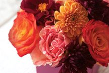 Florals for the home / by Jani Price