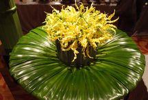 floral designs / by Susan Huelsman, AIFD White Leaf Designs