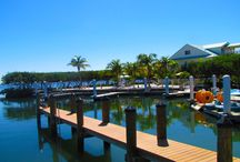 Dove Creek Lodge / Pictures from around Dove Creek Lodge Hotel Grounds.  The Jewel of Key Largo! / by Dove Creek Lodge