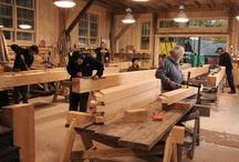 wood / by jonas neverdauskas