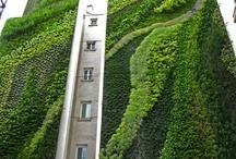 Gardens/Green lungs / modern,green,grass,fern,succulents,concrete,rooftop,japanese zen inspired,vertical gardens / by neuances