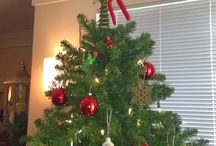 Elf on the Shelf / by Jennifer Thurgood