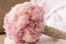 Cute wedding ideas / by Talia Lynn